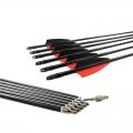 12pcs Fiberglass Arrows 500 Spine 8mm Shaft Archery 30inch